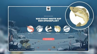 Beste Webseite, App & E-Commerce / Gold: WWF – CO2 Finprint Game Auftraggeber: WWF Agentur: Tunnel23